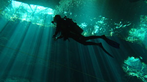 Go Reef and Cenote Diving with Nautilus Aquatics in Mexico