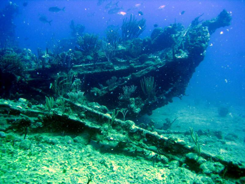 The Rhone in the British Virgin Islands BVI is one of the wrecks you will get to dive on during the week long trip with Nautilus Aquatics